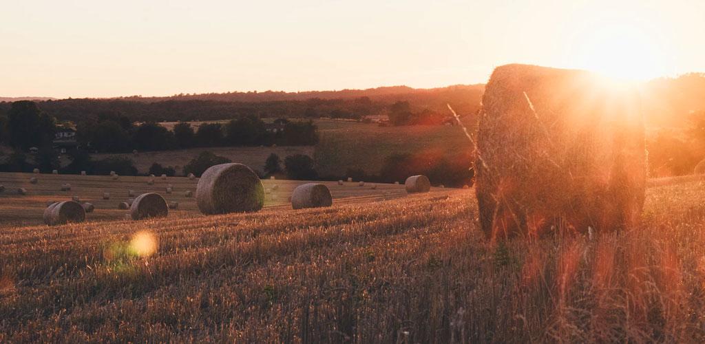 kretsloppsjordbruk