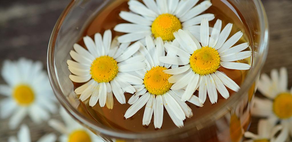 Kamomill lugnar magen, både som te och i en kompress på magen.