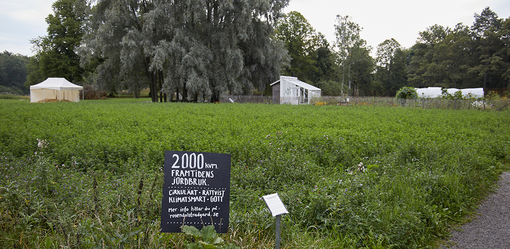 Hållbara 2000 kvadratmeter. Närmast är vallodlingen, längre bort alla matgrödor. Foto Erik Olsson.